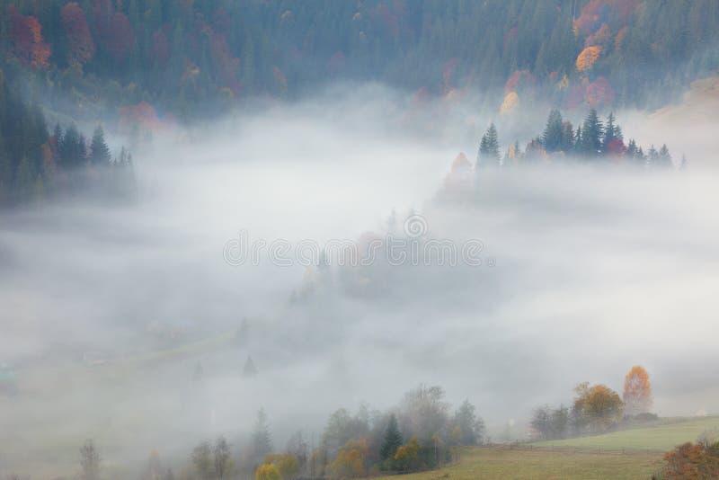 Mening van Misty Fog in de Bergen - Mooi Autumn Forest stock foto's