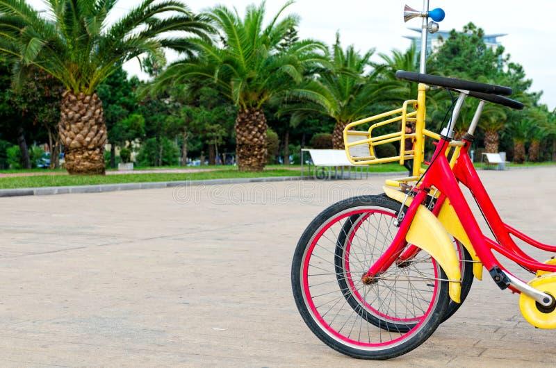 Mening van mooie stadsstraat met palmen, stadspark met wa stock foto's