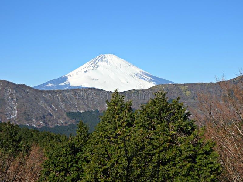 Mening van MT Fuji van Hakone-Ropeway stock fotografie