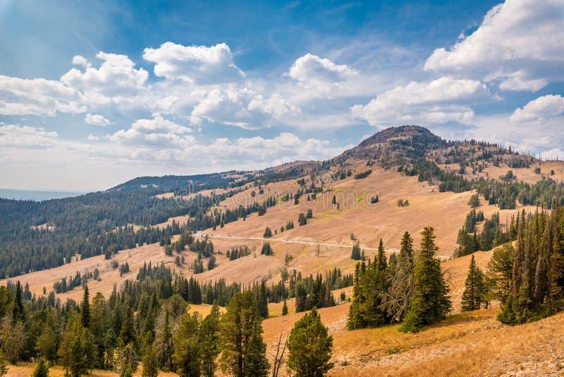Mening van Mt Washburn in het Nationale Park van Yellowstone stock foto's