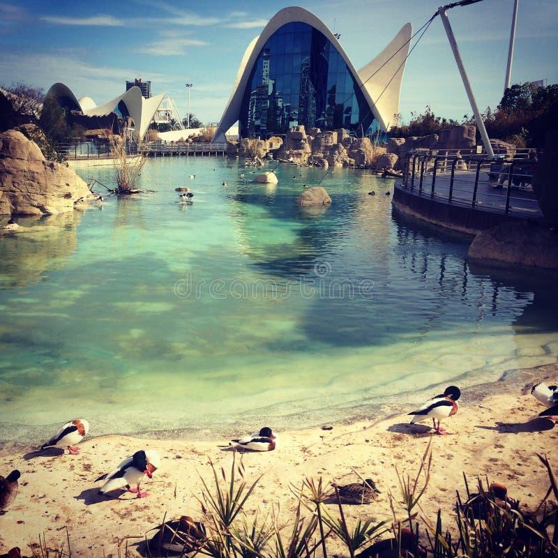 Mening van Oceanografisch in de Stad van Kunsten en Wetenschappen stock fotografie