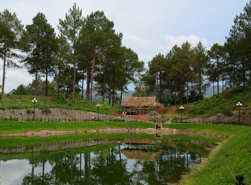 Mening van park met vele bomen en bergachtergrond royalty-vrije stock afbeeldingen