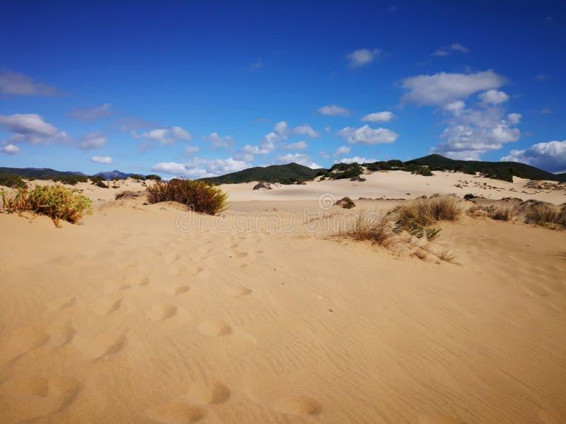 Mening van Piscinas-Duin in Sardinige, een natuurlijke woestijn royalty-vrije stock fotografie