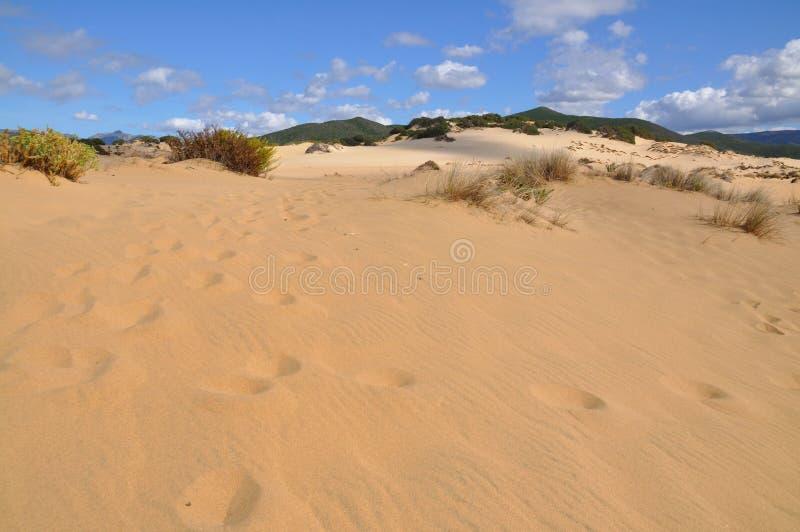 Mening van Piscinas-Duin in Sardinige, een natuurlijke woestijn royalty-vrije stock foto