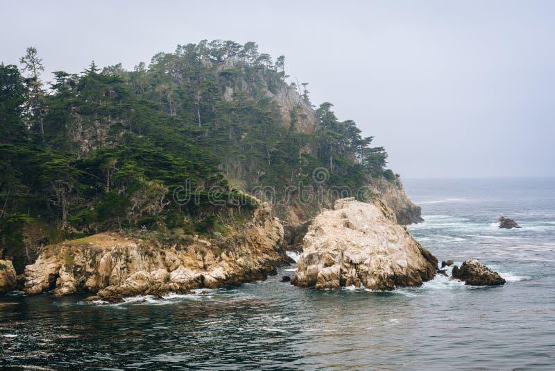 Mening van rotsachtige bluffs en de Vreedzame Oceaan, bij de Staat van Puntlobos stock afbeelding