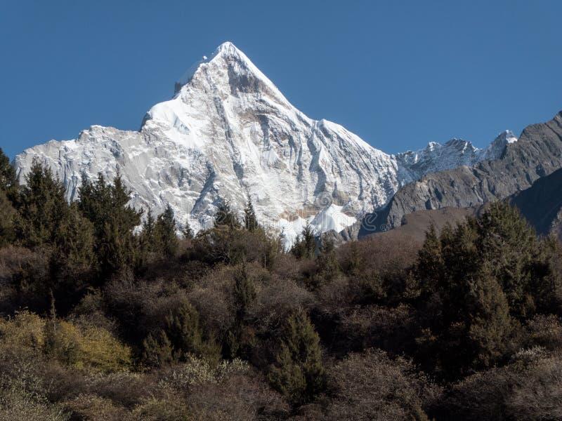 Mening van Siguniang-Berg van binnenuit Changping-Vallei, Sigunia stock afbeeldingen