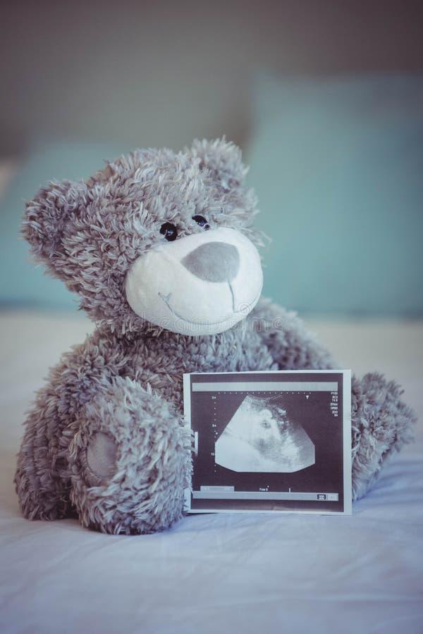 Mening van teddybeer en babyultrasone klank stock afbeeldingen