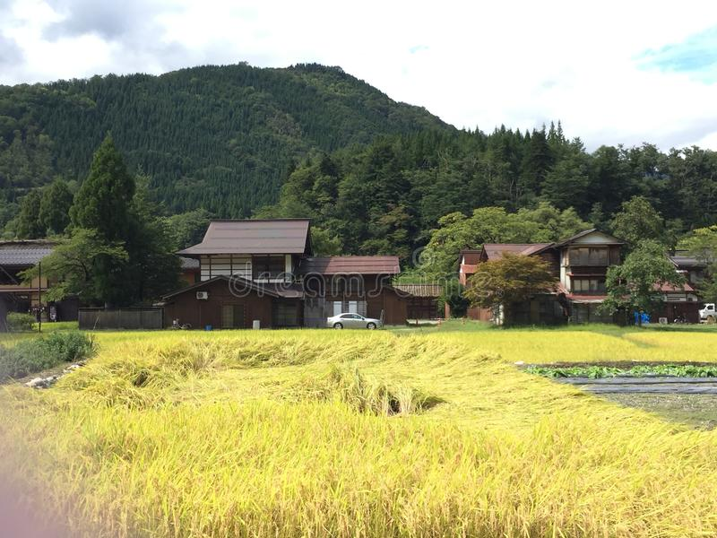Mening van verschillende huizenstijl naast gassho-Zukuri landbouwbedrijfhuizen, Shirakawago, Gifu, Japan stock afbeelding