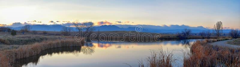 Meningen die van Josh's-Vijver het lopen weg, op Zonsondergang die in Broomfield Colorado wijzen door Cattails wordt omringd, v stock fotografie