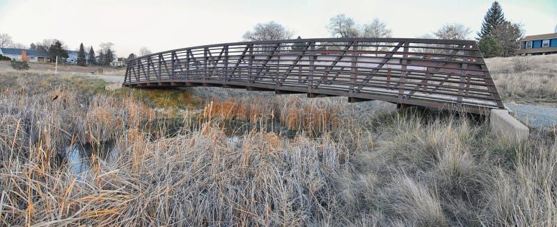 Meningen die van Josh's-Vijver het lopen weg, op Zonsondergang die in Broomfield Colorado wijzen door Cattails wordt omringd, v stock afbeelding