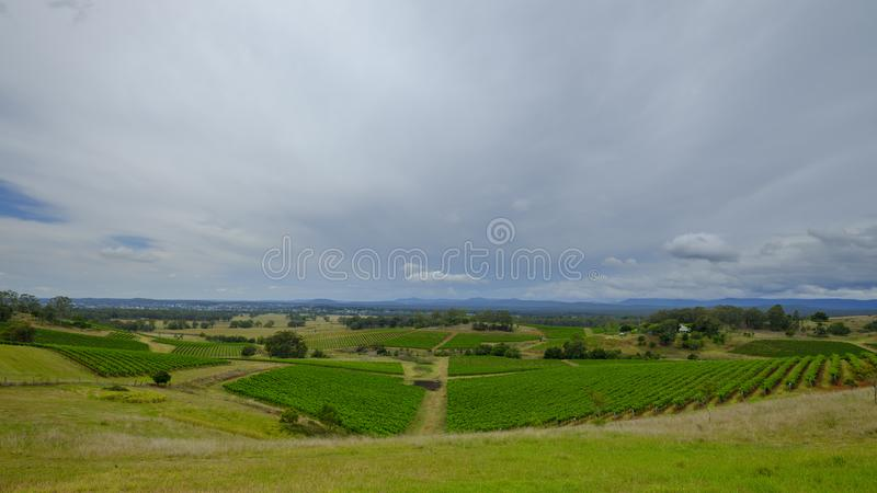 Meningen rond Millfield en Cessnock in Hunter Valley, NSW, Australi? stock foto's