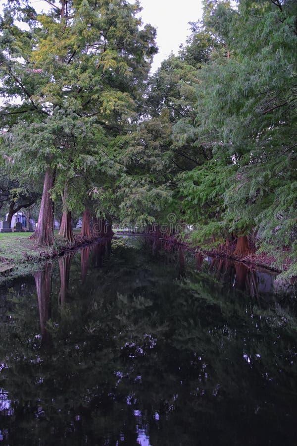 Meningen van bomen en unieke aardaspecten die New Orleans, met inbegrip van het wijzen van op pools in begraafplaatsen en het Tui stock afbeeldingen