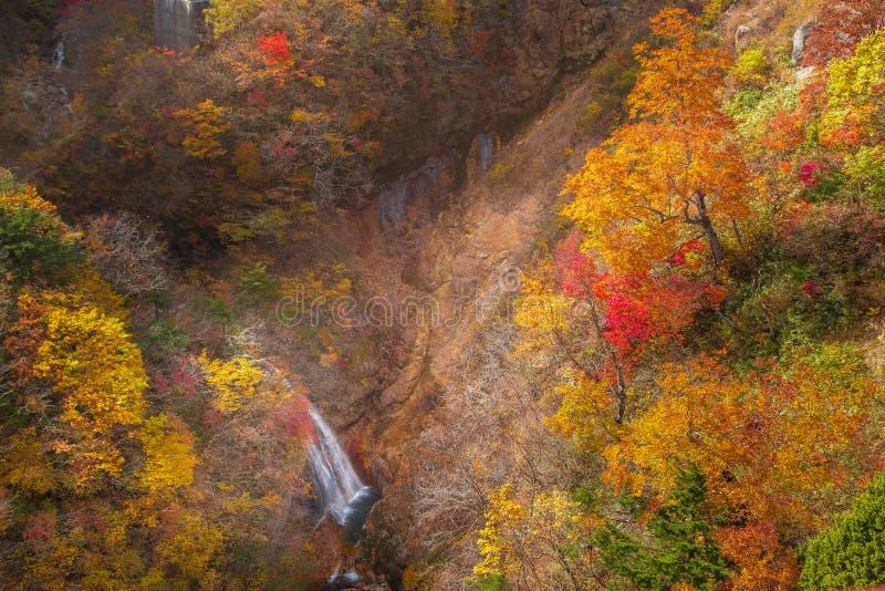 Menings Mooie waterval Autumn Season in Japan stock afbeeldingen