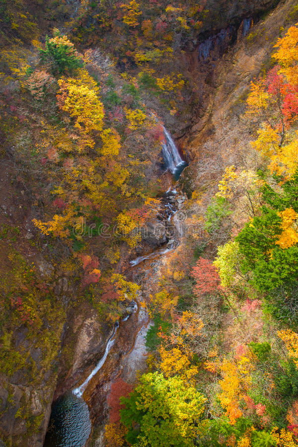 Menings Mooie waterval Autumn Season in Japan stock fotografie