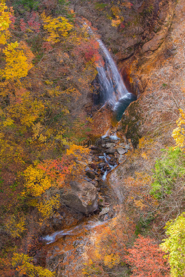 Menings Mooie waterval Autumn Season in Japan royalty-vrije stock afbeelding