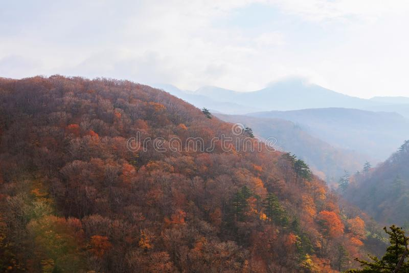 Meningsberg van Jogakura-Kloof in de Herfstseizoen, Aomori, Japan royalty-vrije stock foto