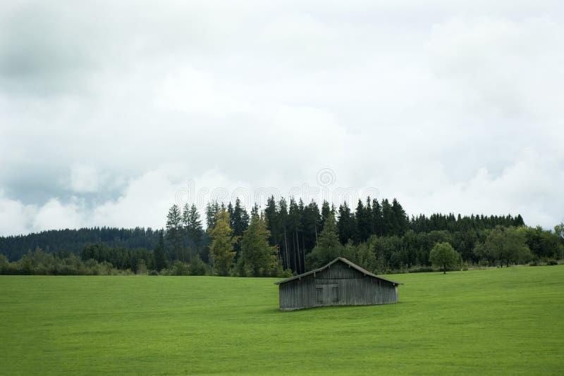 Meningslandschap van berg en grasgebied naast weg bij platteland stock afbeeldingen