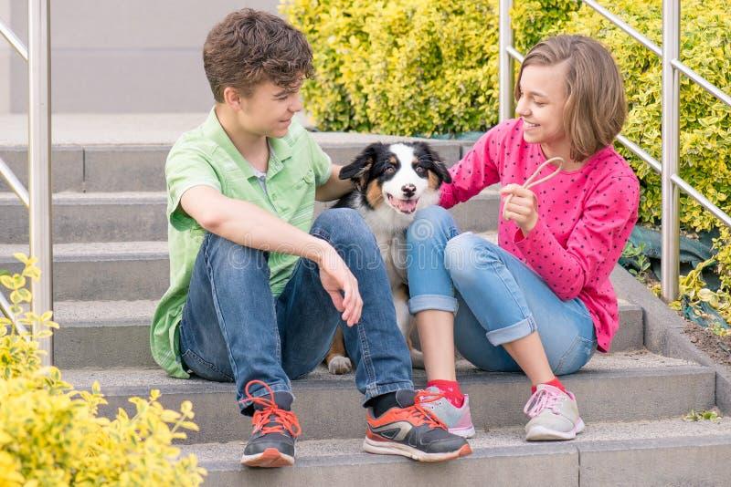Menino adolescente e menina que jogam com cachorrinho fotografia de stock royalty free