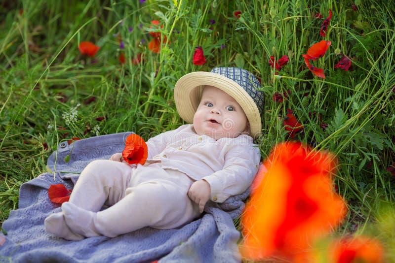 Menino adorável do bebê que joga com as flores vermelhas da papoila em um campo de trigo Bebê que levanta no chapéu retro rústico imagens de stock