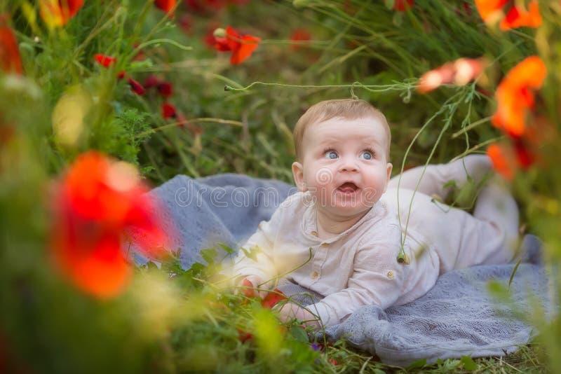 Menino adorável do bebê que joga com as flores vermelhas da papoila em um campo de trigo Bebê que levanta no chapéu retro rústico imagens de stock royalty free