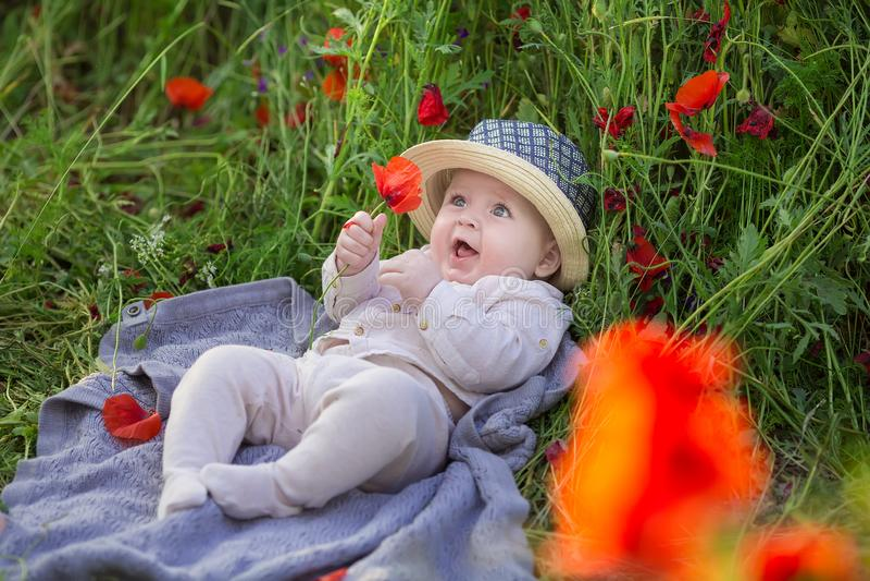 Menino adorável do bebê que joga com as flores vermelhas da papoila em um campo de trigo Bebê que levanta no chapéu retro rústico imagem de stock
