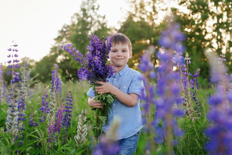 Menino adorável em um t-shirt azul com um ramalhete dos tremoceiros em um prado fotografia de stock royalty free