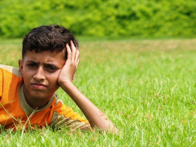 Menino asiático no prado fotografia de stock royalty free