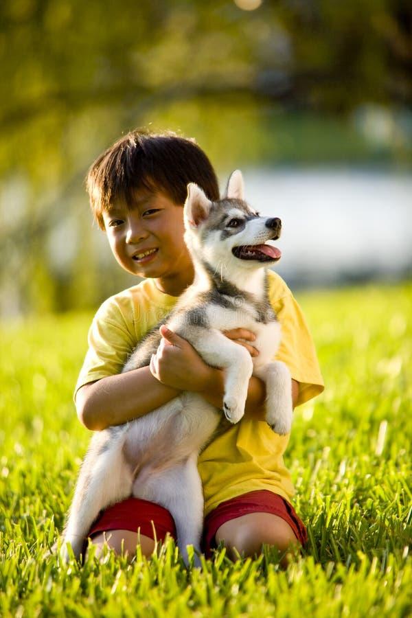 Menino asiático novo que abraça o filhote de cachorro que senta-se na grama foto de stock