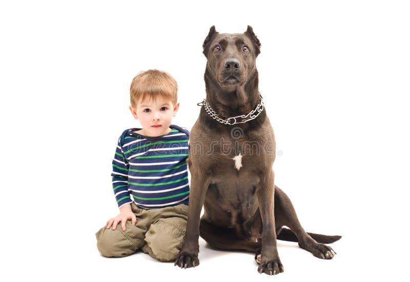 Menino bonito e cão grande fotos de stock royalty free
