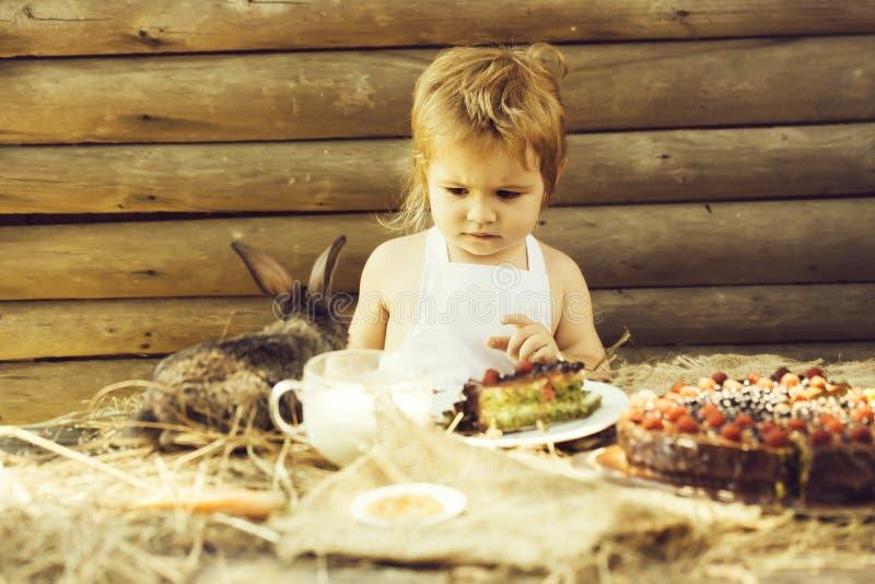 Menino bonito e coelho pequeno imagem de stock royalty free