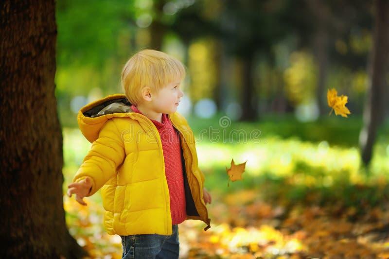 Menino bonito feliz da criança que tem o divertimento com folhas de outono foto de stock royalty free