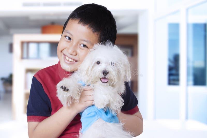 Menino bonito que abraça o cão maltês em casa fotografia de stock
