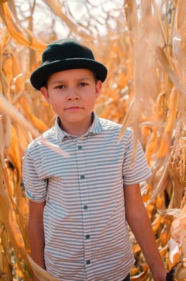Menino caucasiano pequeno na exploração agrícola do milho Estação da colheita SMI feliz foto de stock