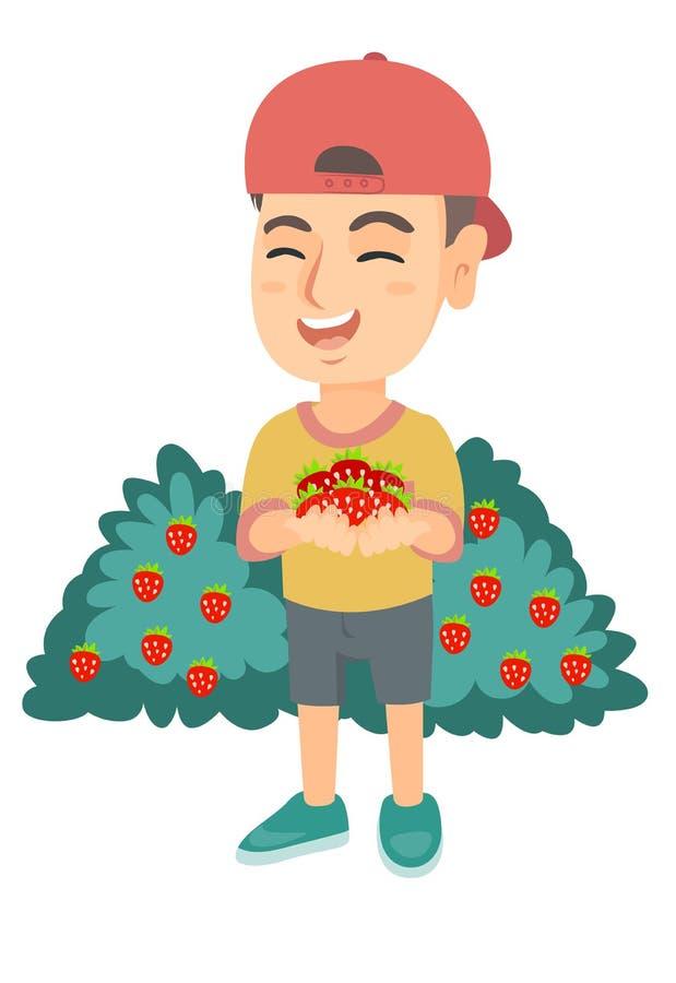Menino caucasiano que guarda morangos frescas nas mãos ilustração do vetor