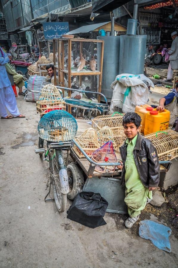Menino com as gaiolas em Afeganistão fotografia de stock
