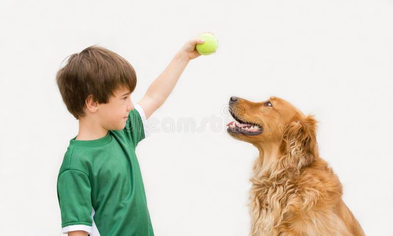Menino com cão imagens de stock