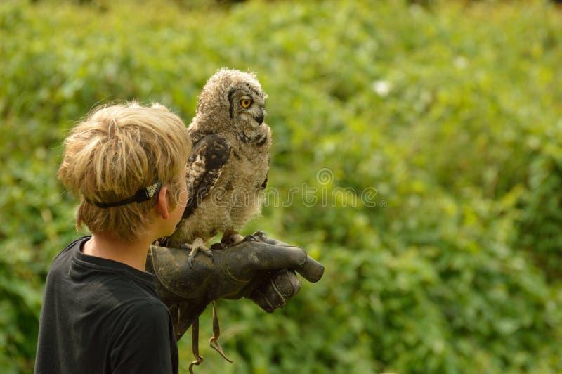 Menino com a coruja de águia de África foto de stock