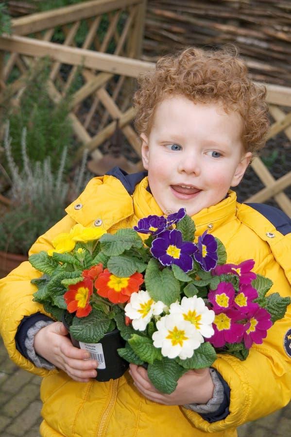Menino com flores da mola imagens de stock