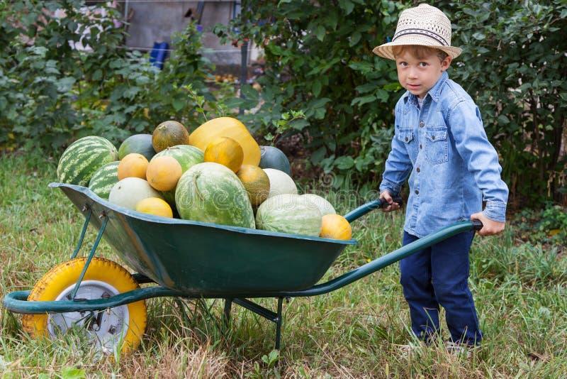 Menino com o carrinho de mão no jardim imagem de stock royalty free