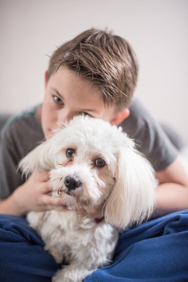 Menino com seu cão imagens de stock royalty free