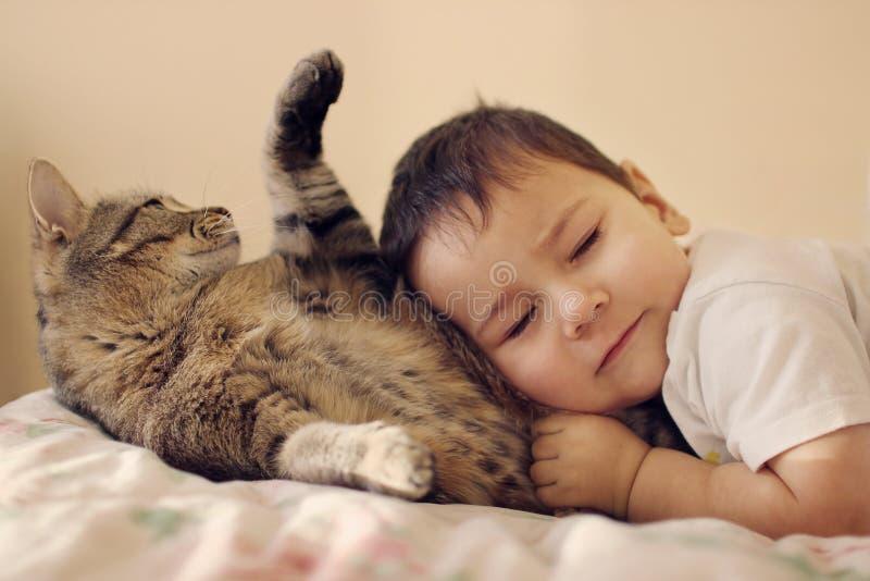 Menino da criança com encontro fechado na barriga de macio o gato imagens de stock royalty free
