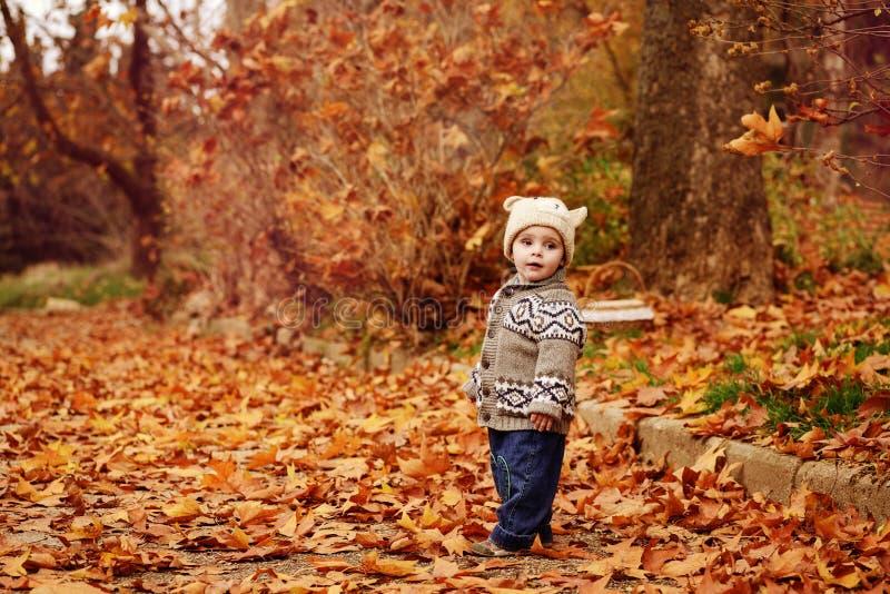 Menino da criança no parque da queda fotografia de stock