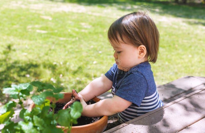 Menino da criança que ajuda a plantar plantas em um jardim foto de stock