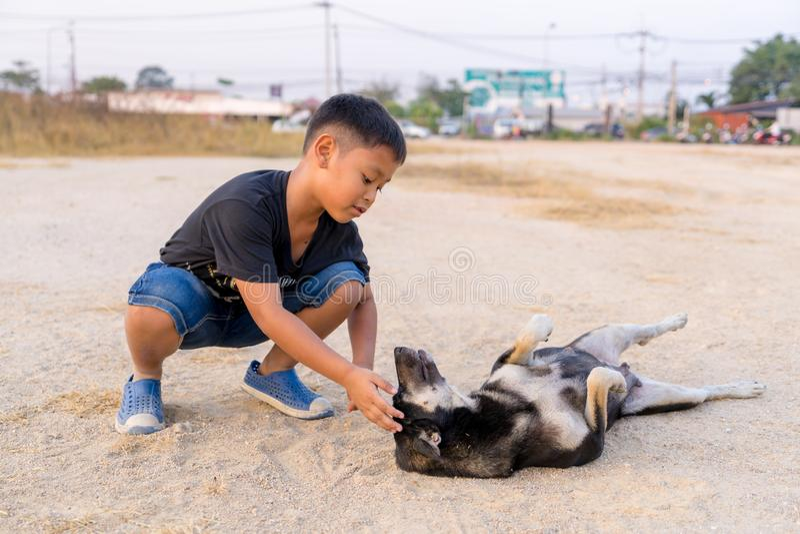 Menino das crianças que joga com os cães pretos na terra imagem de stock