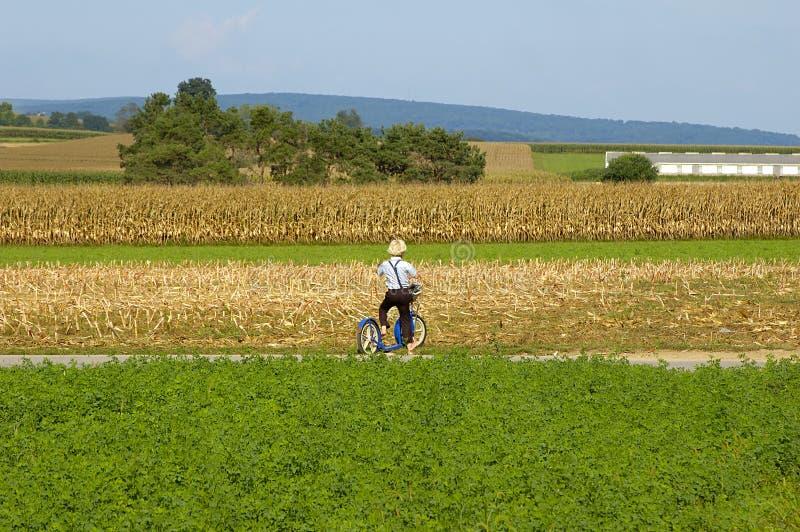 Menino de Amish no 'trotinette'. imagens de stock