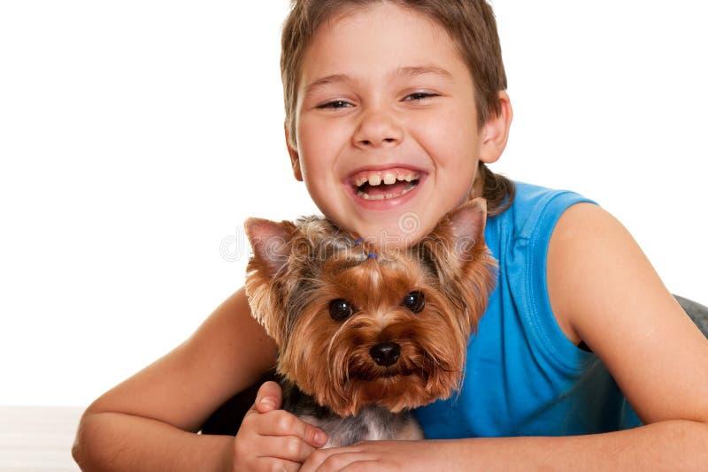 Menino de Hahdsome com terrier de yorkshire fotografia de stock