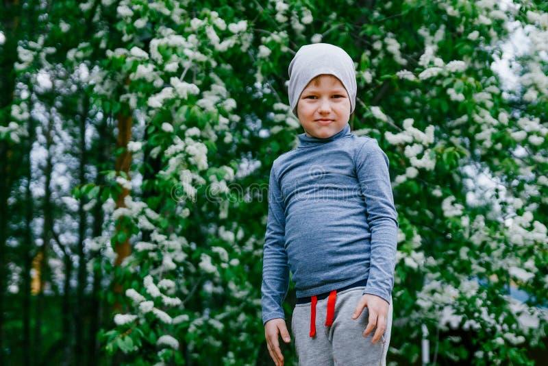 Menino de Ittle em um fundo da cereja de florescência imagens de stock royalty free