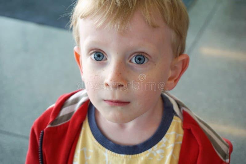 Menino de quatro anos dos olhos azuis bonitos que olha surpreendido na distância fotografia de stock royalty free