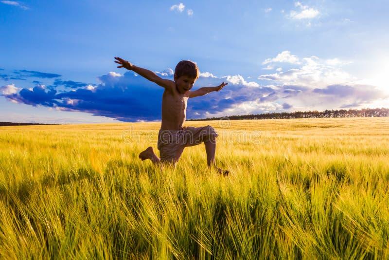 Menino de salto no campo de trigo imagens de stock