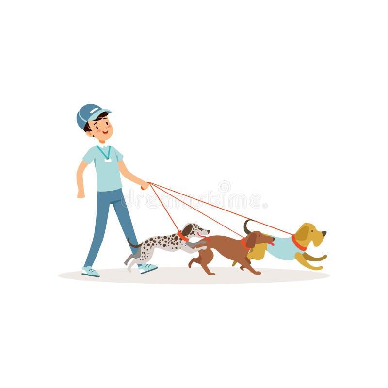 Menino de sorriso que anda com grupo de cães diferentes das raças Voluntário dos jovens no trabalho Caráter na calças de ganga, t ilustração stock